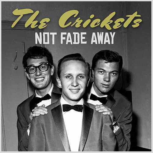 Buddy Holly and the Crickets – Not FadeAway