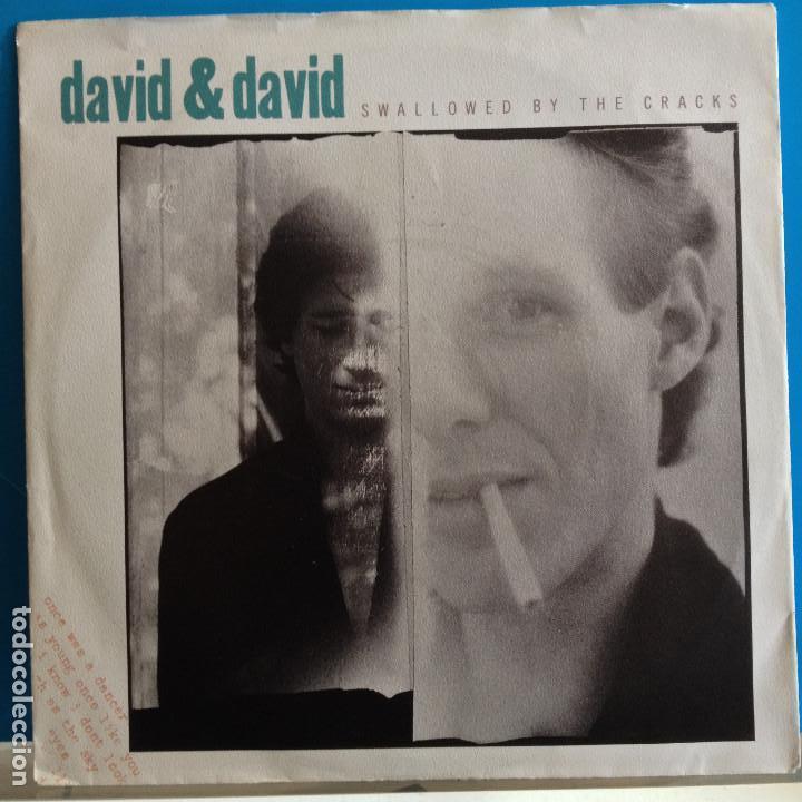 David and David – Swallowed By TheCracks