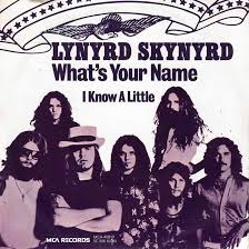Lynyrd Skynyrd – I Know A Little