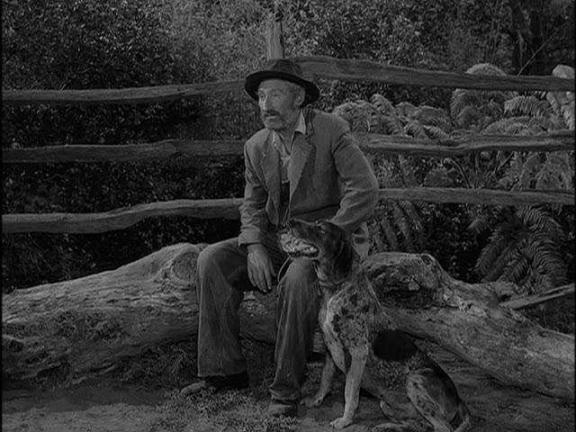 Twilight Zone – TheHunt